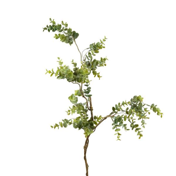 Eucalyptuszweig L.90cm