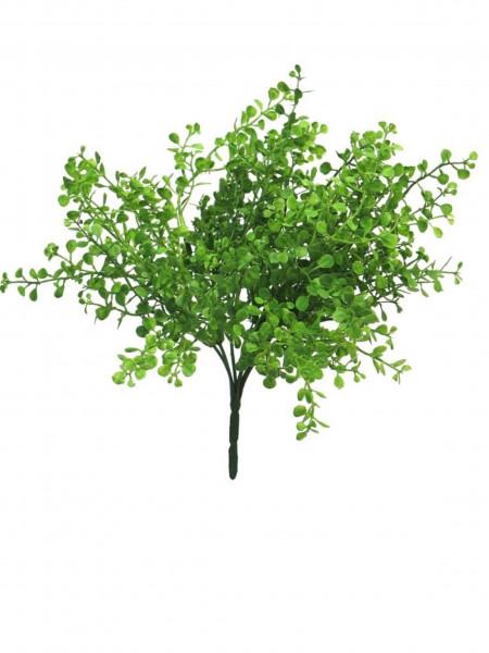 Ivy Busch grün